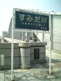 Sumidagawa_2